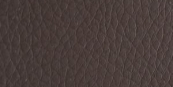 D19 - Темно-коричневая