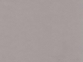 D21 - Светло серый